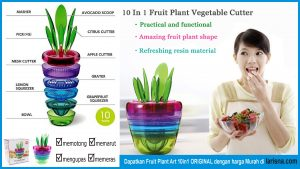 Fruite Plant Art 10 in 1
